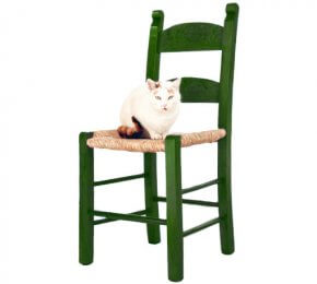 Kafenion Stuhl in Grün